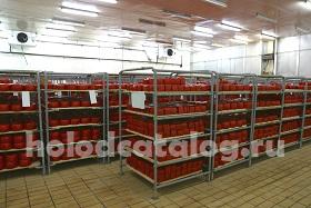 Холодильная камера для хранения сыров